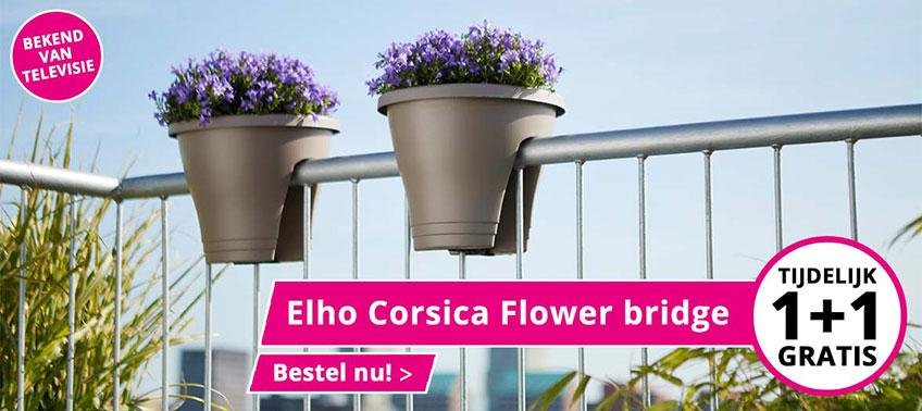 Elho Corsica Flower Bridge 1+1 gratis