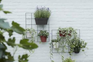 Elho Loft Urban Green Wall Rack - Living Black