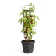 Elho Green Basics Tomaten Pot 33cm - Living Black