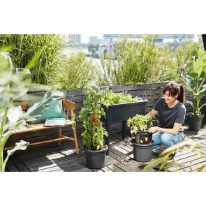 Elho Green Basics Tomaten Pot 33cm - Living Black