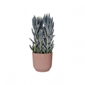 Elho Vibes Fold 14 cm - Delicaat Roze
