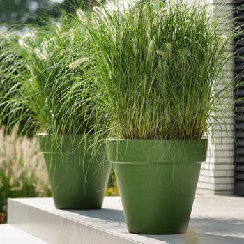 Elho Pure Round Grass