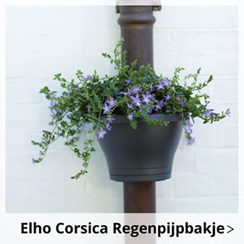 Elho Corsica Regenpijpbakje