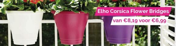 Elho Corsica flower bridge aanbieding