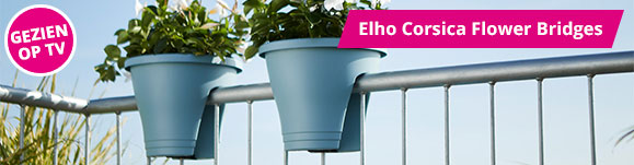 Elho Corsica flower bridge