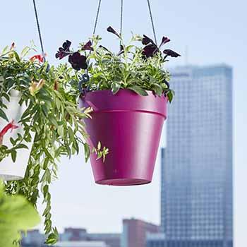 Elho Loft Urban Hanging Basket